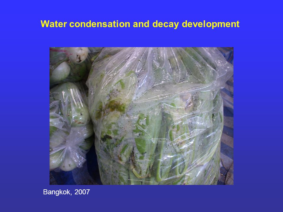 Water condensation and decay development