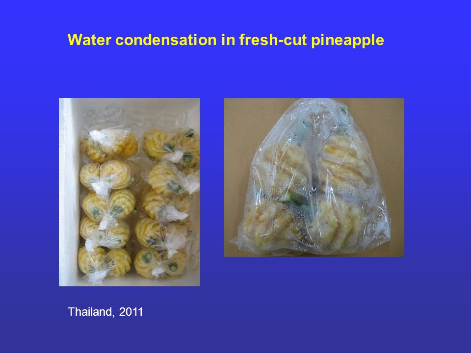 Water condensation in fresh-cut pineapple