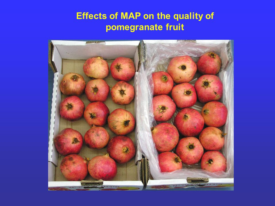 Effects of MAP on the quality of