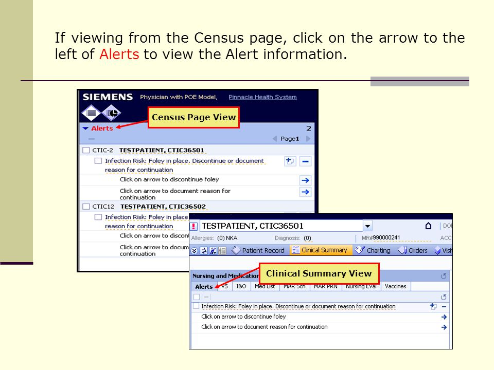 If viewing from the Census page, click on the arrow to the left of Alerts to view the Alert information.