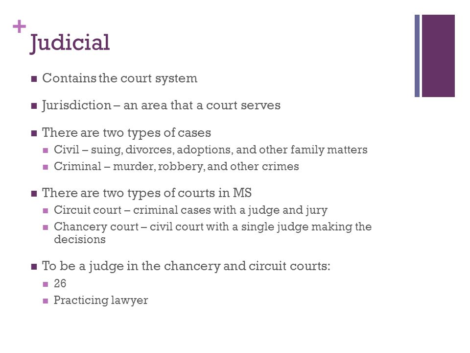 Judicial Contains the court system