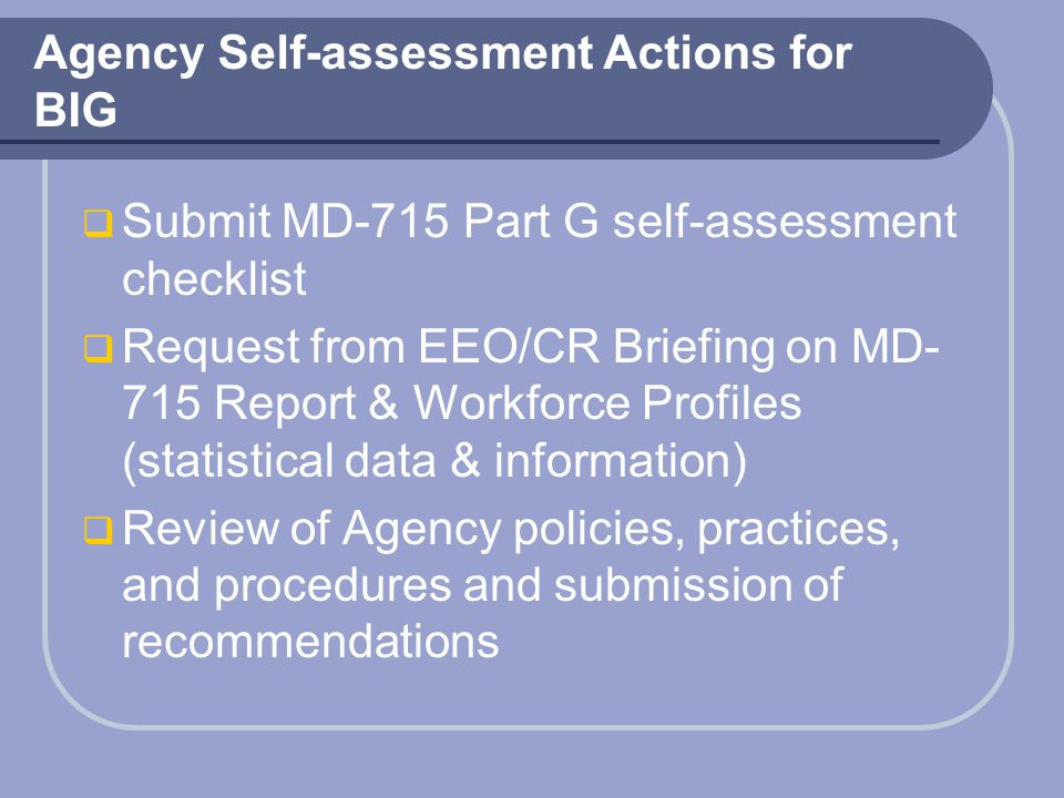 Agency Self-assessment Actions for BIG