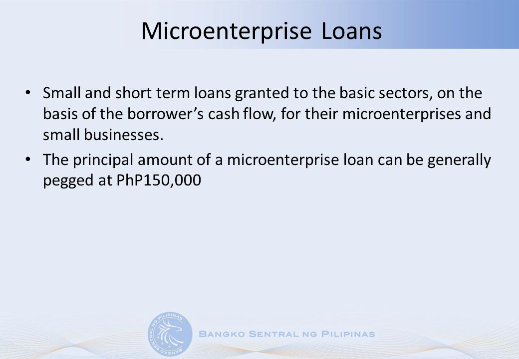 Microenterprise Loans