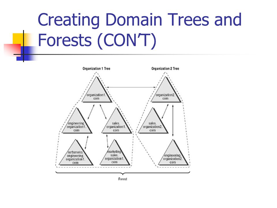 Creating Domain Trees and Forests (CON'T)