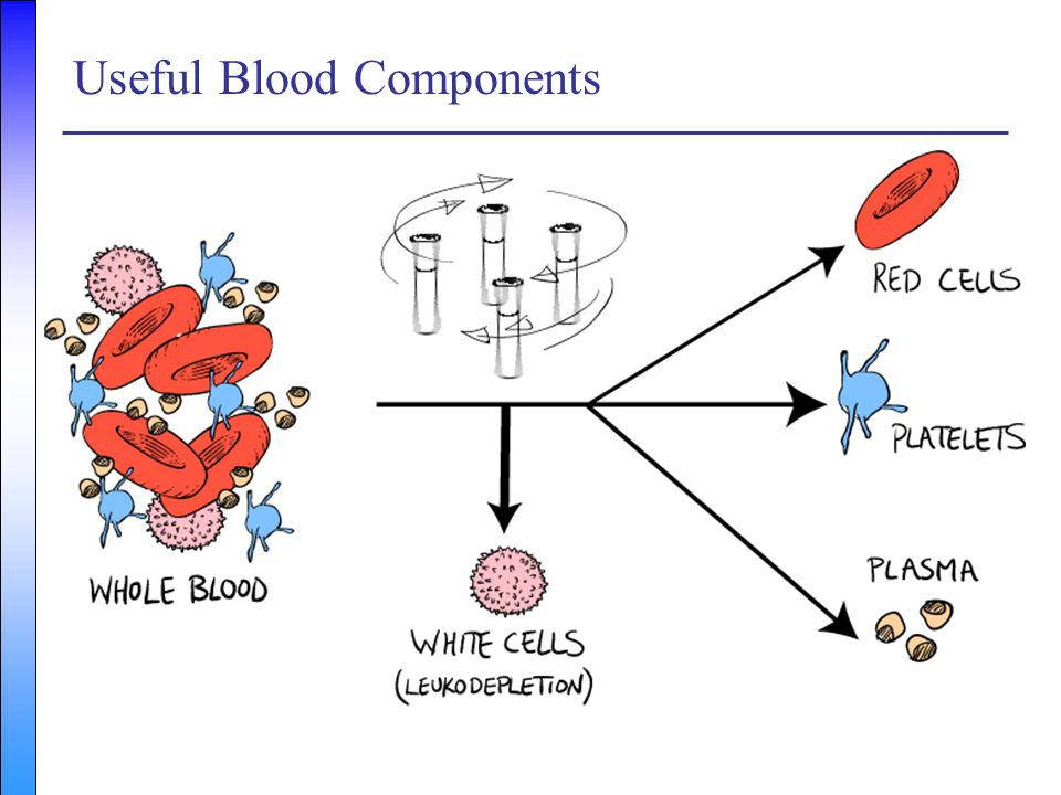 Useful Blood Components
