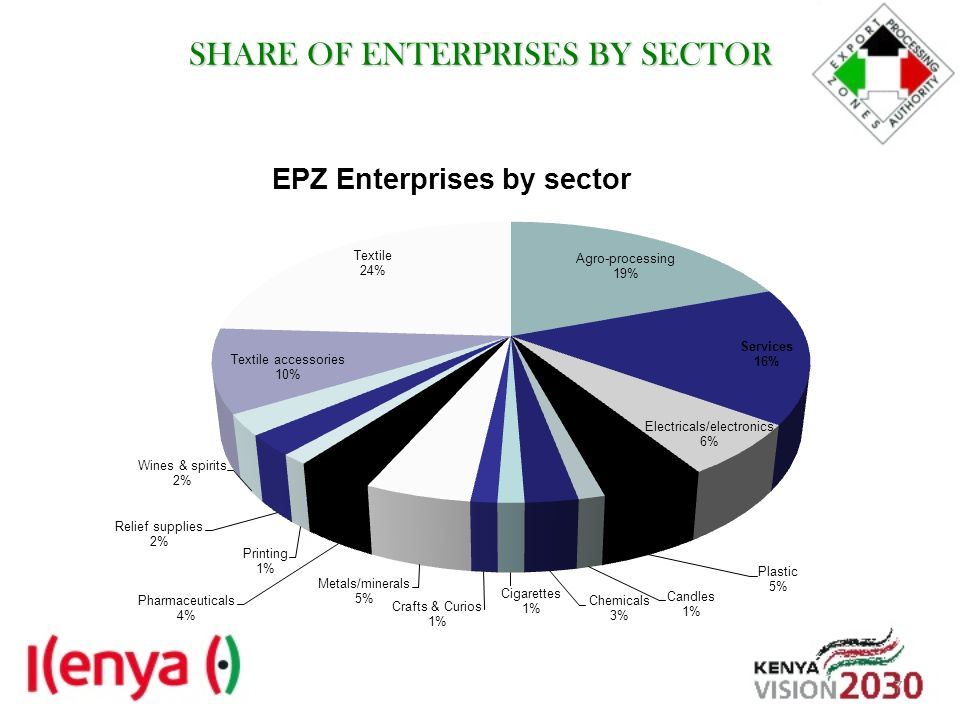 SHARE OF ENTERPRISES BY SECTOR