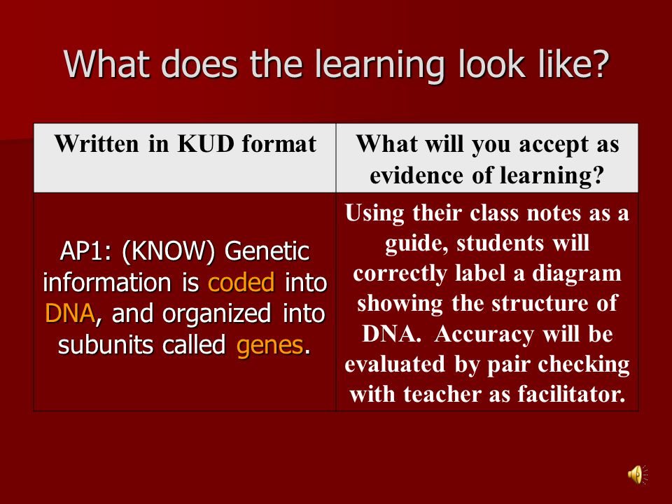 What does the learning look like