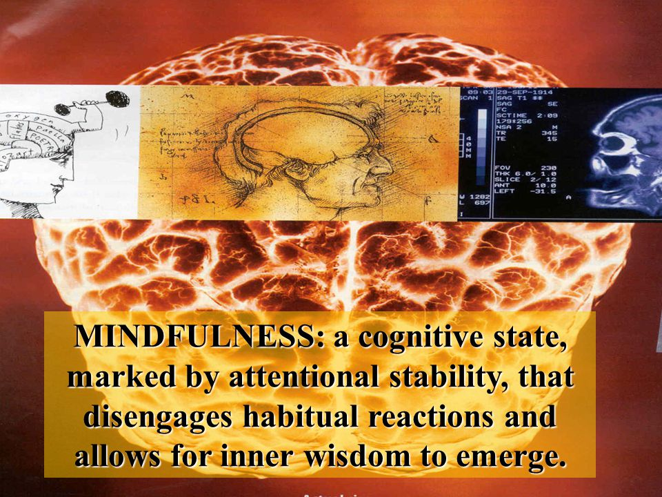 MINDFULNESS: a cognitive state, marked by attentional stability, that disengages habitual reactions and allows for inner wisdom to emerge.