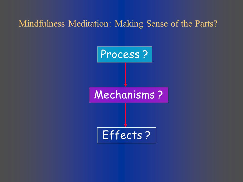 Process Mechanisms Effects