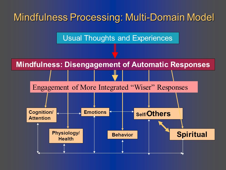 Mindfulness Processing: Multi-Domain Model