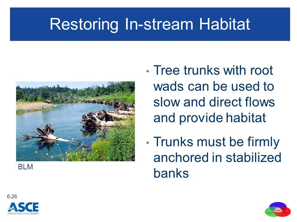 Restoring In-stream Habitat