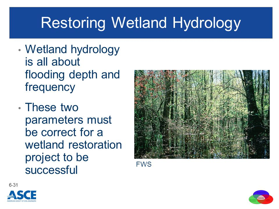 Restoring Wetland Hydrology
