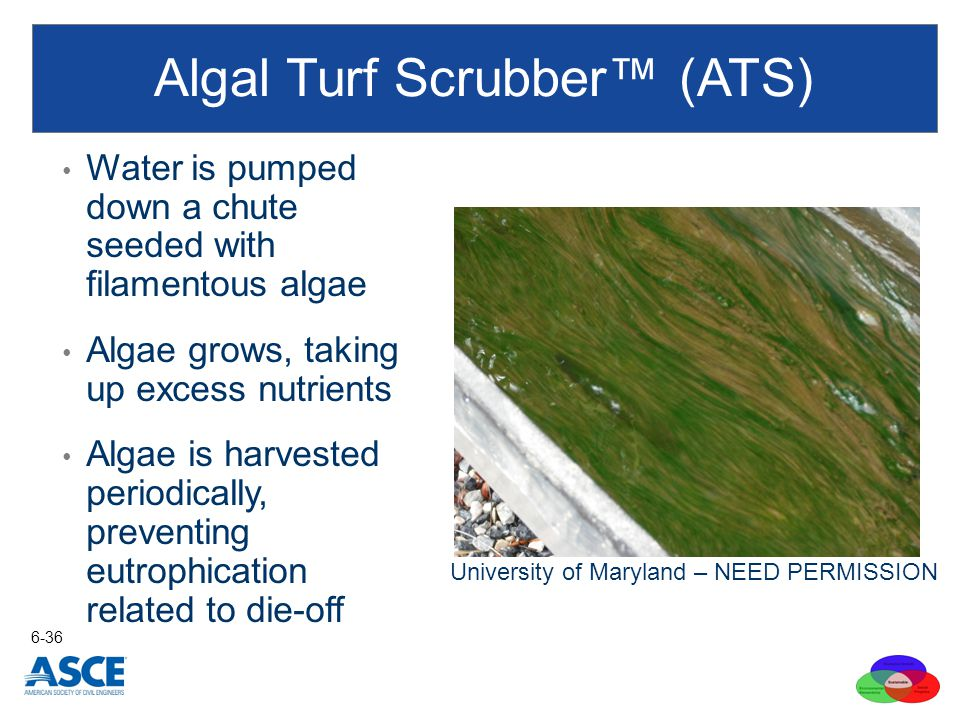 Algal Turf Scrubber™ (ATS)