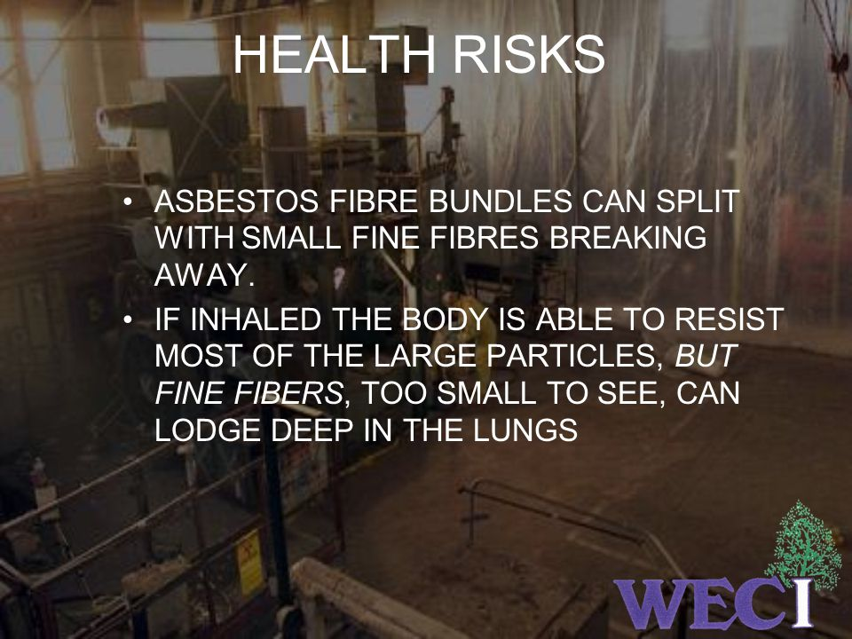 HEALTH RISKS ASBESTOS FIBRE BUNDLES CAN SPLIT WITH SMALL FINE FIBRES BREAKING AWAY.