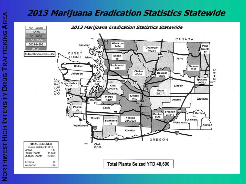 2013 Marijuana Eradication Statistics Statewide