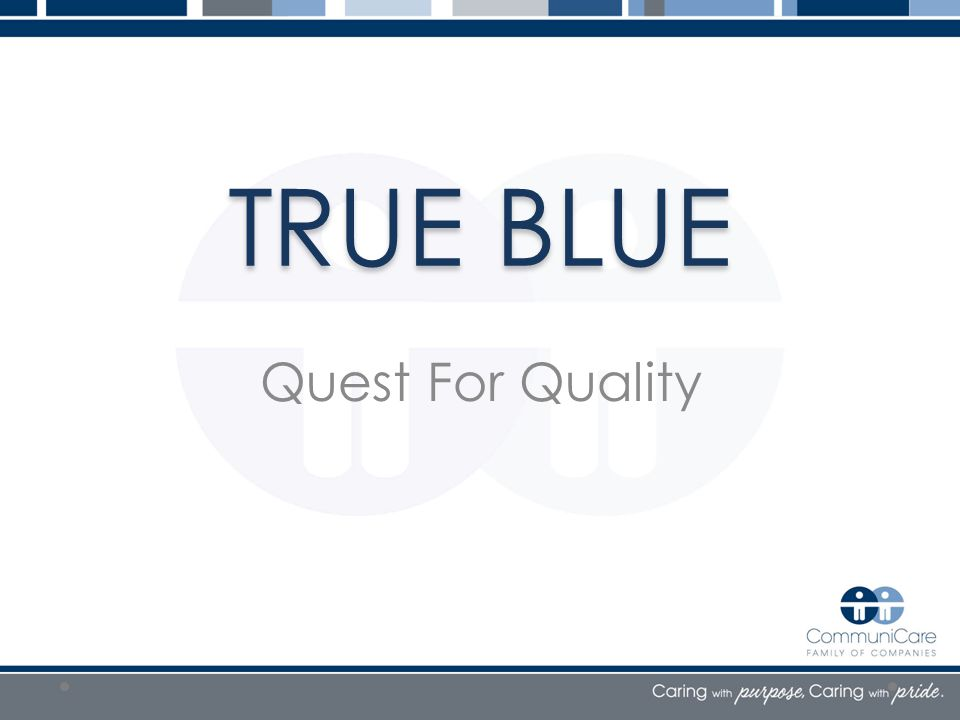 TRUE BLUE Quest For Quality