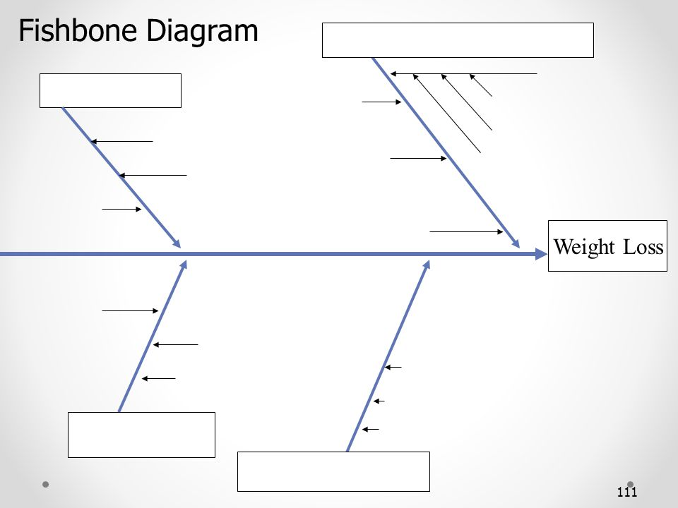 Fishbone Diagram Weight Loss 111