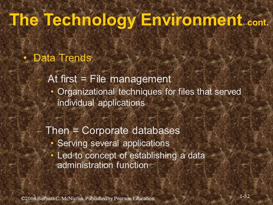 The Technology Environment cont.