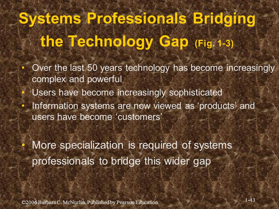 Systems Professionals Bridging the Technology Gap (Fig. 1-3)