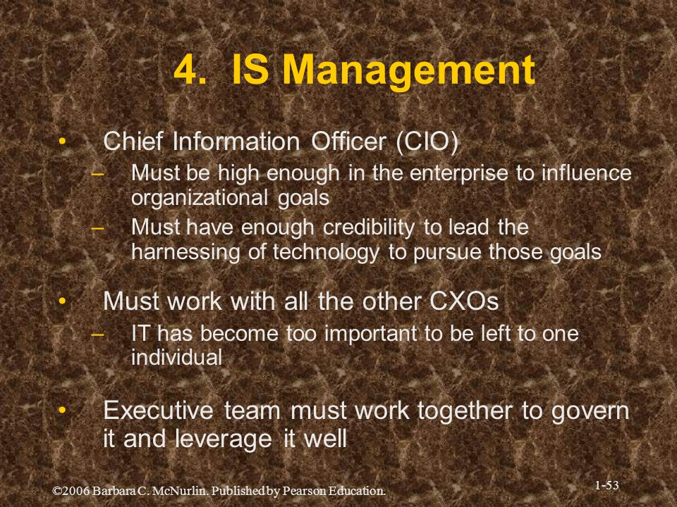 4. IS Management Chief Information Officer (CIO)