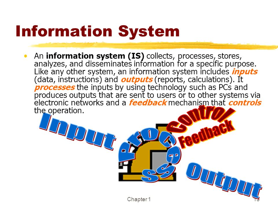 Information System Control Input Process Feedback Output