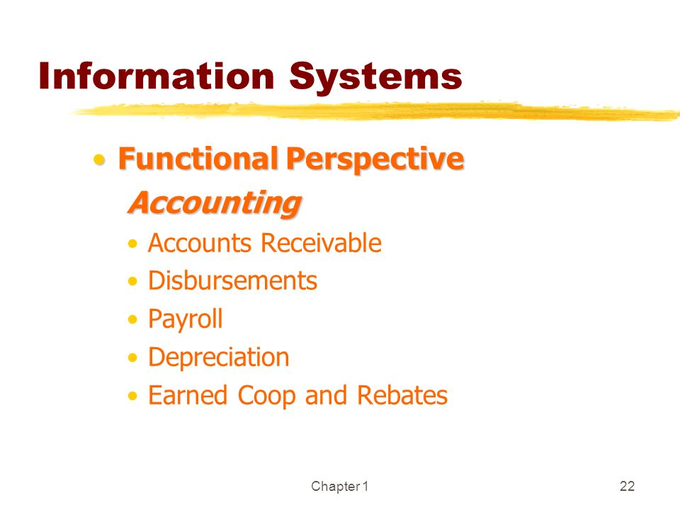 Information Systems Functional Perspective Accounting