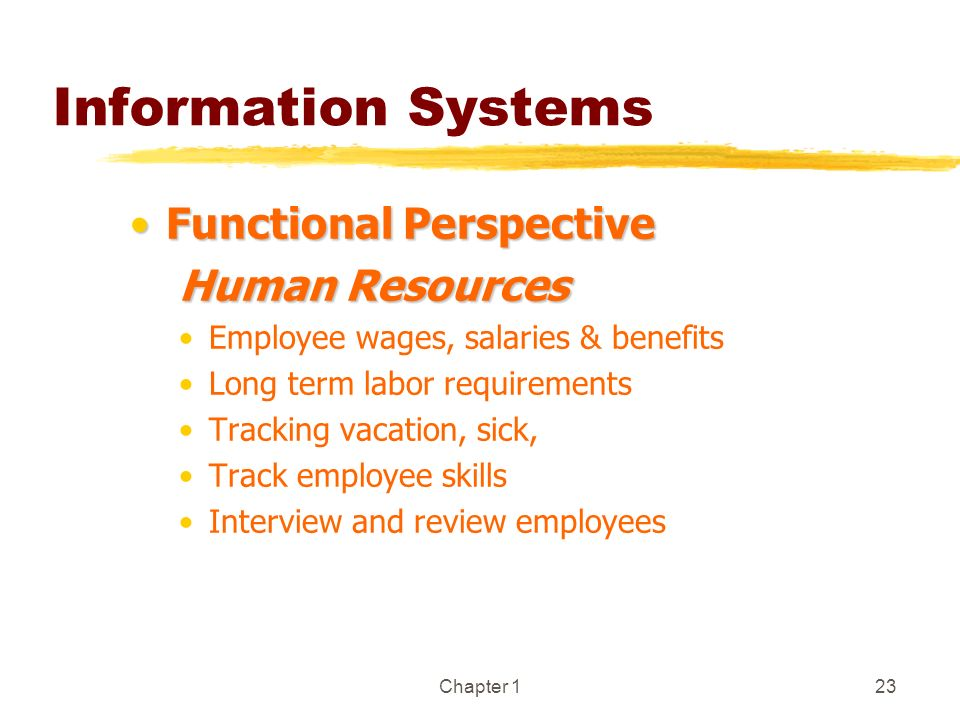 Information Systems Functional Perspective Human Resources