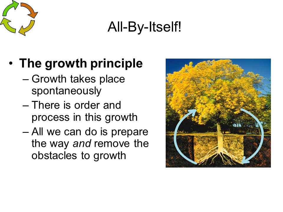 All-By-Itself! The growth principle Growth takes place spontaneously