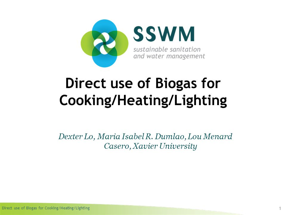 Direct use of Biogas for Cooking/Heating/Lighting