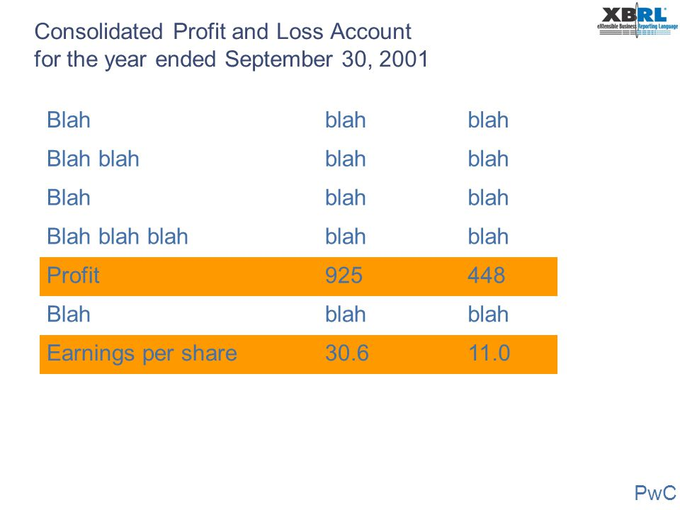 Consolidated Profit and Loss Account for the year ended September 30, 2001