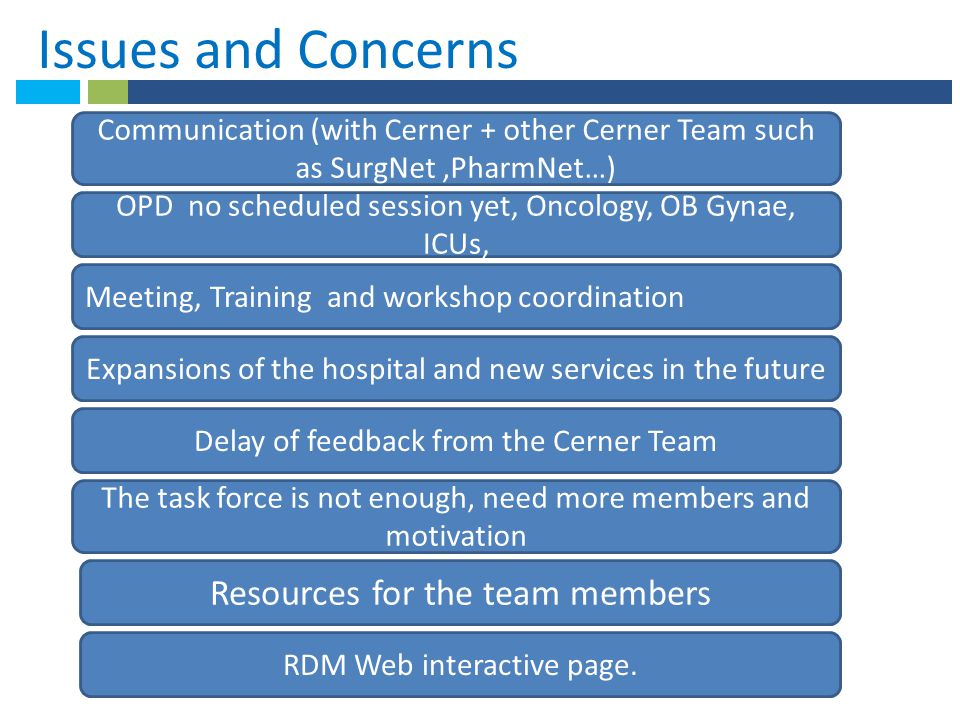 *Issues and Concerns . Resources for the team members