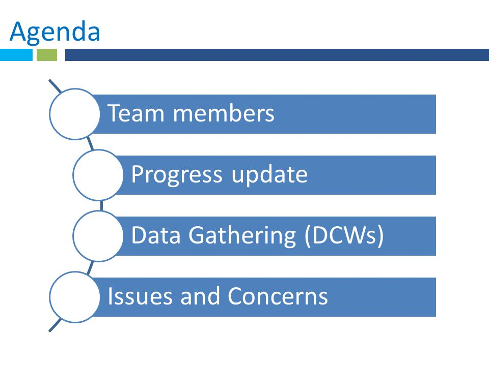 Agenda Team members Progress update Data Gathering (DCWs)