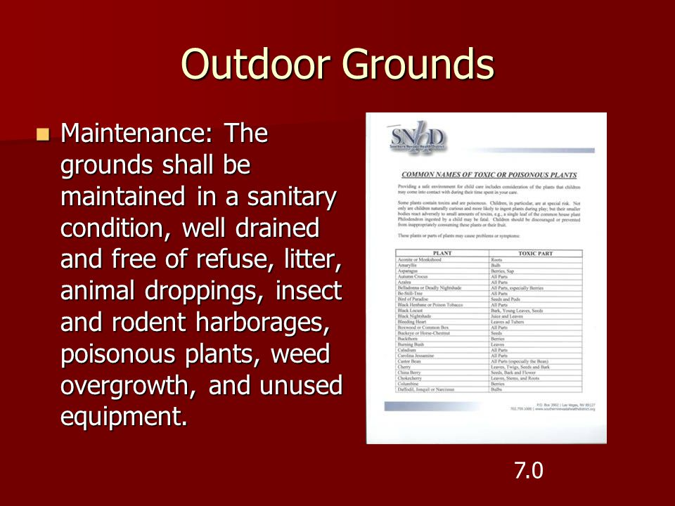 Outdoor Grounds