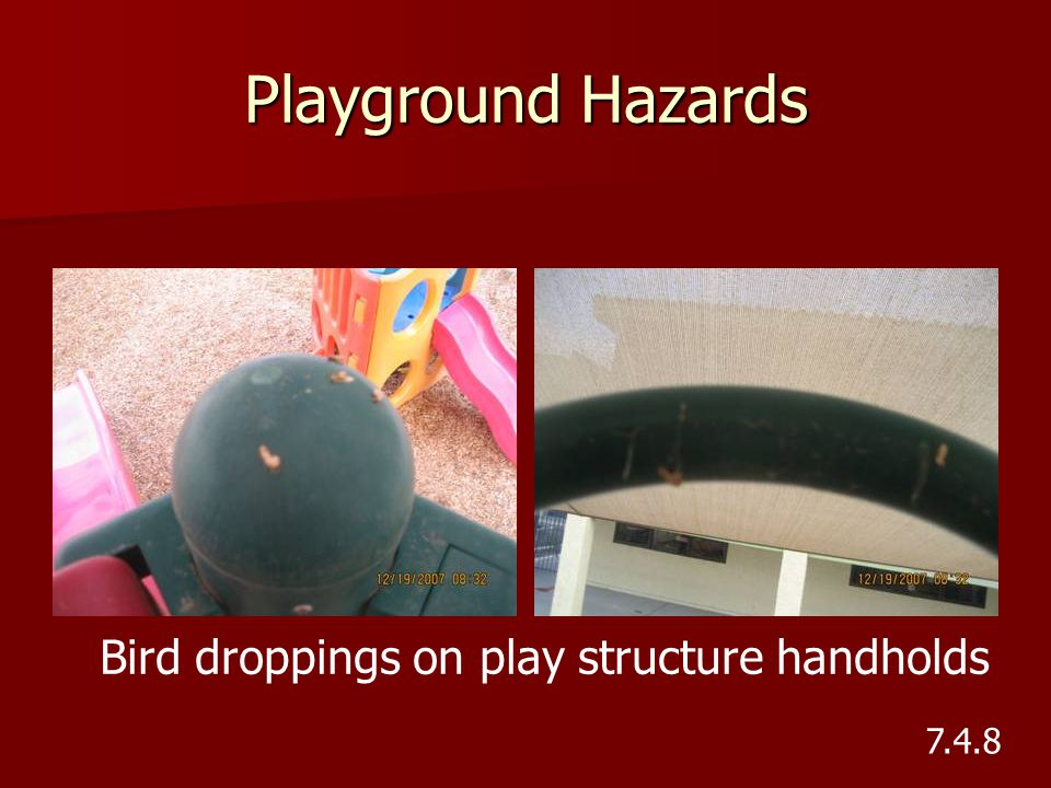 Bird droppings on play structure handholds