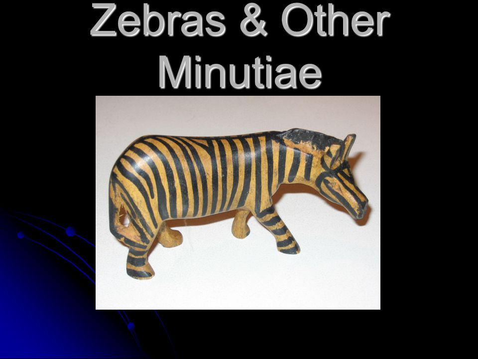 Zebras & Other Minutiae
