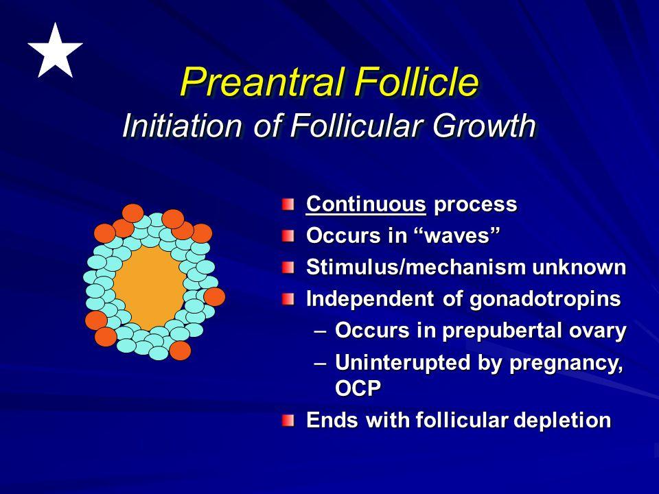 Preantral Follicle Initiation of Follicular Growth