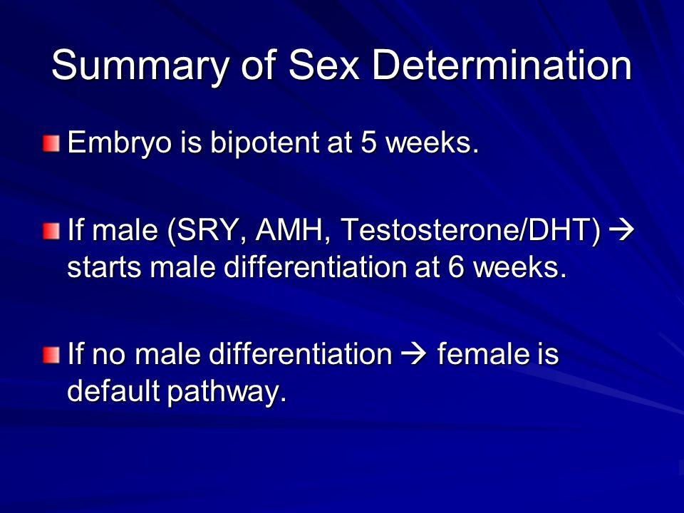 Summary of Sex Determination