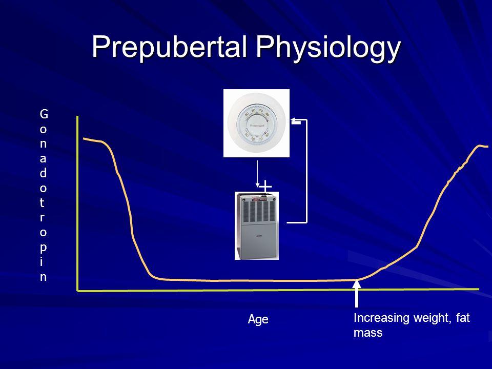 Prepubertal Physiology