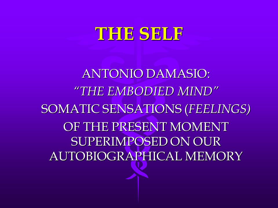 THE SELF ANTONIO DAMASIO: THE EMBODIED MIND