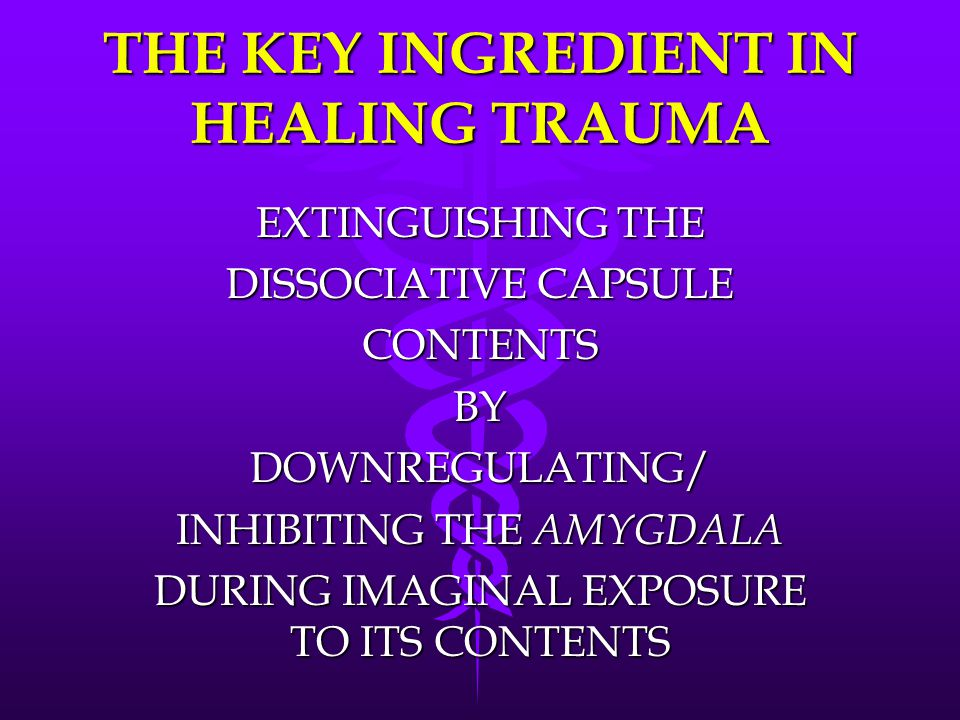 THE KEY INGREDIENT IN HEALING TRAUMA