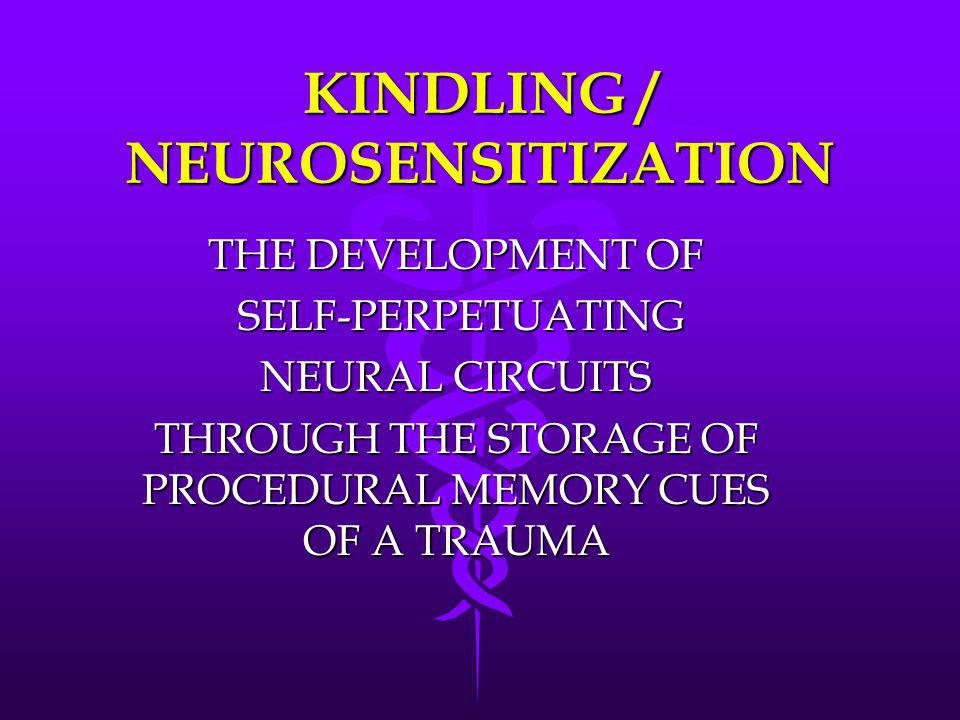 KINDLING / NEUROSENSITIZATION