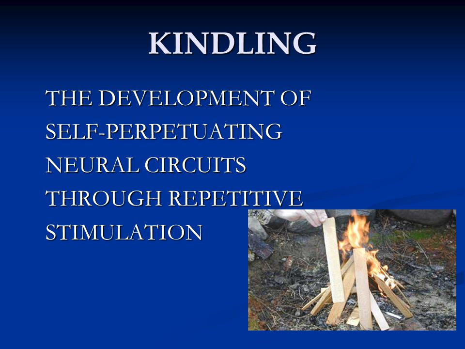 KINDLING THE DEVELOPMENT OF SELF-PERPETUATING NEURAL CIRCUITS