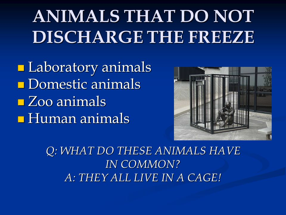 ANIMALS THAT DO NOT DISCHARGE THE FREEZE