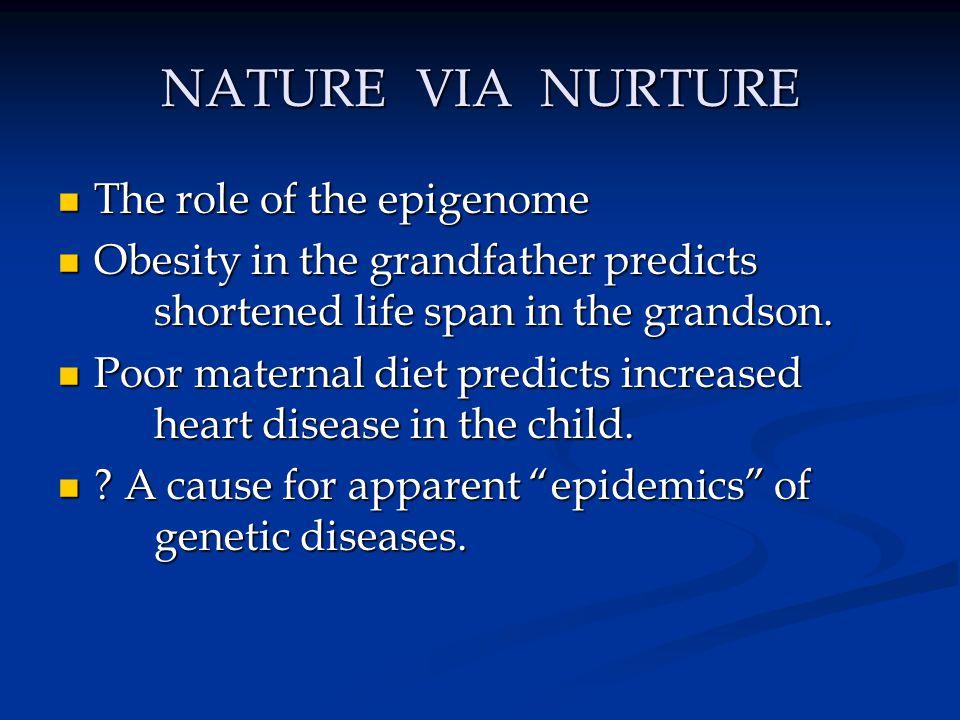 NATURE VIA NURTURE The role of the epigenome