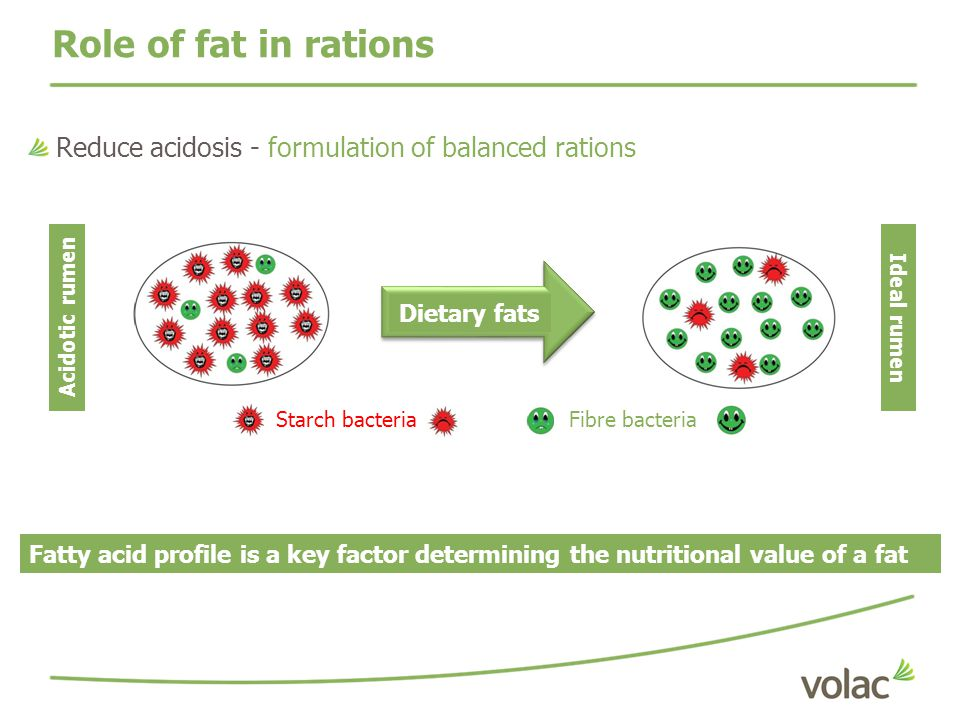 Role of fat in rations Reduce acidosis - formulation of balanced rations. Dietary fats. Acidotic rumen.