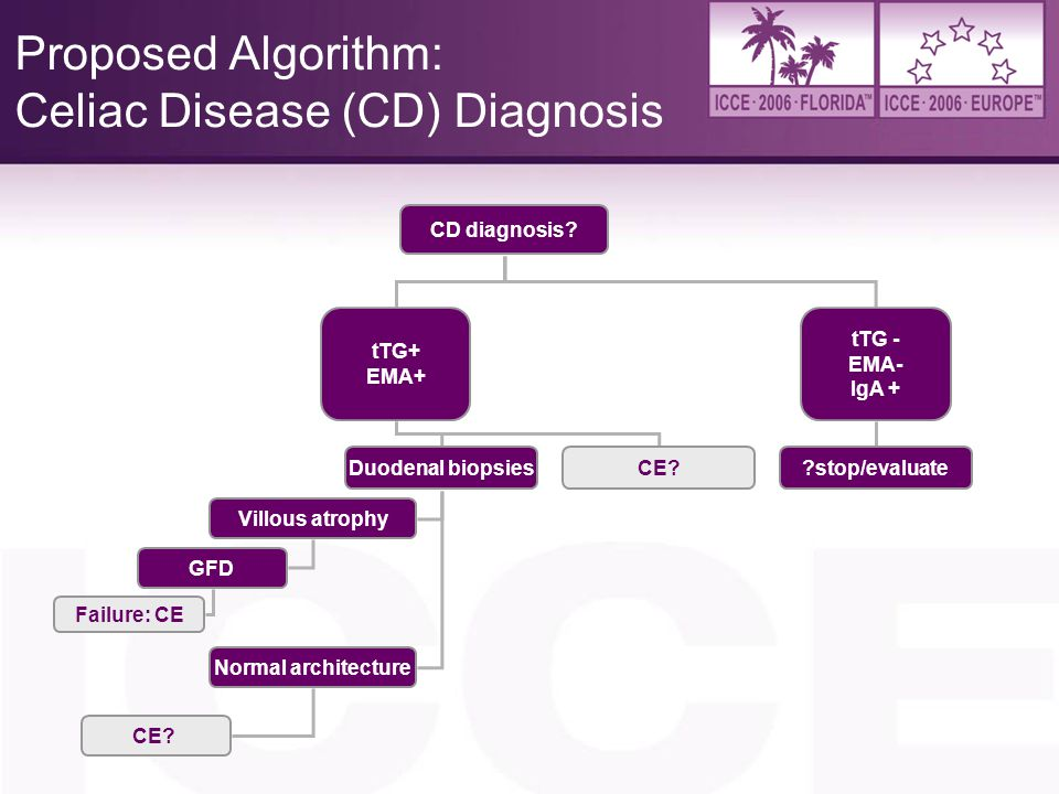Proposed Algorithm: Celiac Disease (CD) Diagnosis