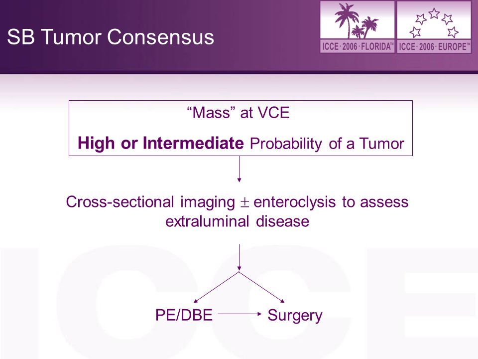 SB Tumor Consensus High or Intermediate Probability of a Tumor