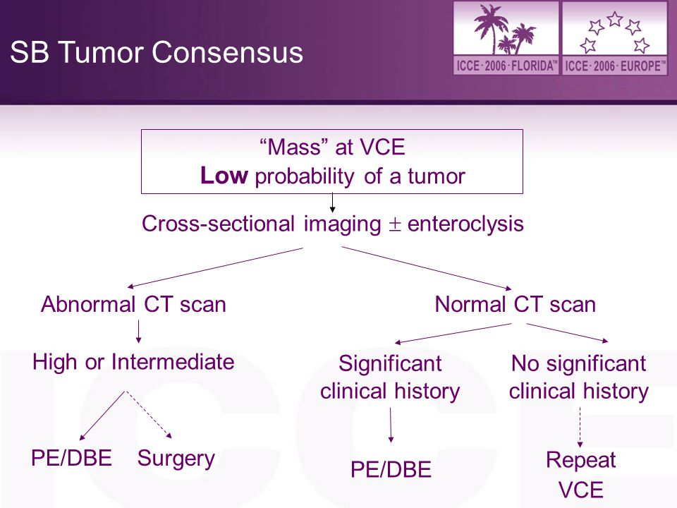 SB Tumor Consensus Low probability of a tumor Mass at VCE