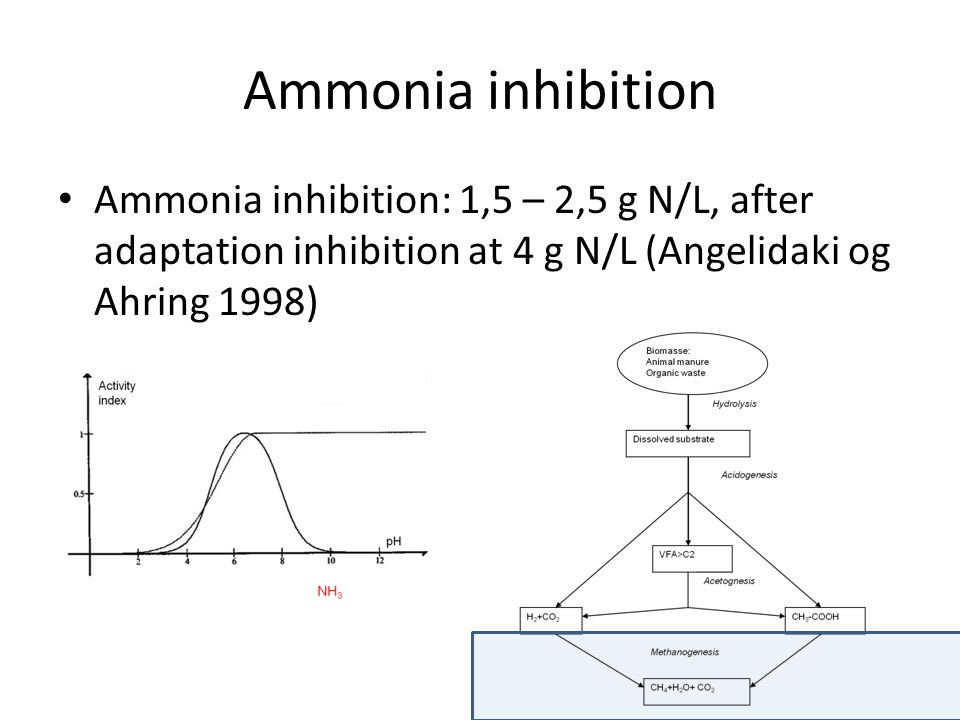 Ammonia inhibition Ammonia inhibition: 1,5 – 2,5 g N/L, after adaptation inhibition at 4 g N/L (Angelidaki og Ahring 1998)