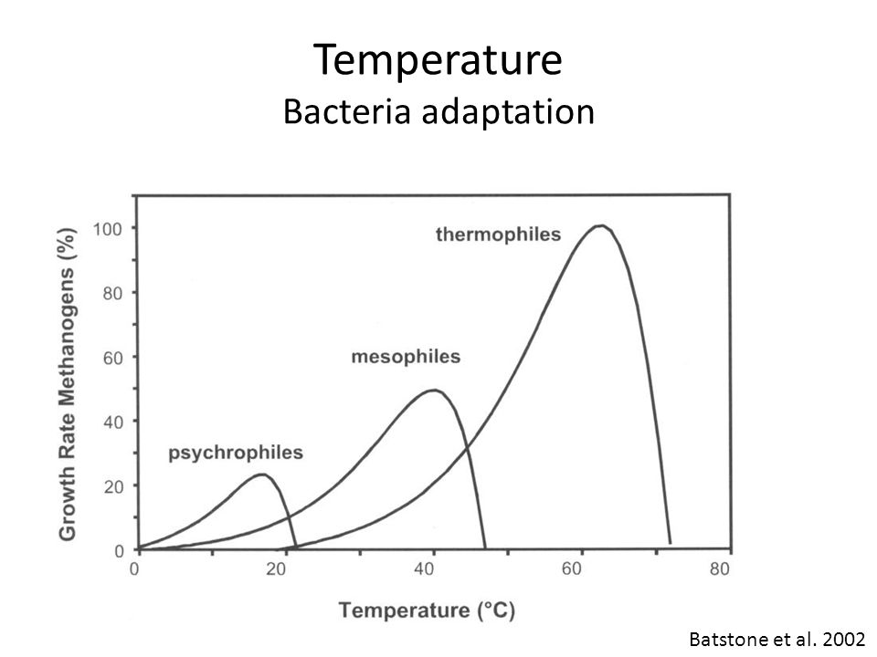 Temperature Bacteria adaptation